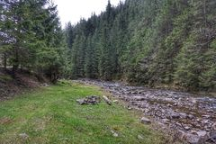 De bergstroom in het bos, bij de bodem is stenen Dichtbij weilandomheining voor vee royalty-vrije stock foto