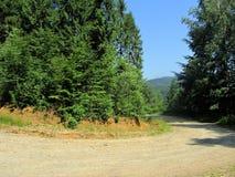 De bergweg 1 van het macadam stock afbeelding