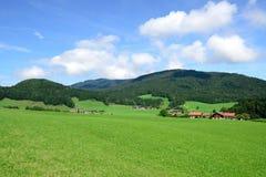 De bergweide van alpen Stock Foto