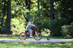 De berijdende fiets van het meisje Stock Afbeeldingen