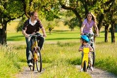 De berijdende fietsen van de familie in de zomer royalty-vrije stock foto