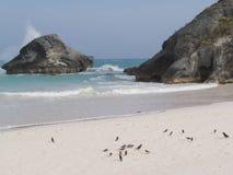 De Bermudas Geïsoleerd Strand Stock Afbeeldingen