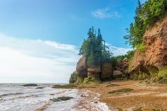 De beroemde Hopewell-vormingen van de Rotsenbloempot at low tide Stock Foto