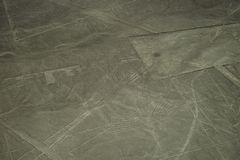 De beroemde Nazca-Lijnen in Peru, hier u kunnen het cijfer van een condor zien stock afbeelding