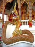 De beschermer van de tempel Stock Afbeelding