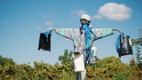 De bescherming tegen vogels is een vogelverschrikker Het leven op het landbouwbedrijf stock afbeelding
