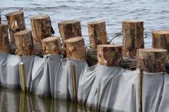De bescherming van de kust bij een meer Stock Afbeelding