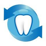 De Bescherming van de tand Stock Foto