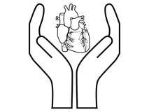 De bescherming van het hart Royalty-vrije Stock Afbeeldingen