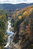 De besnoeiingen van de Ottauquecheerivier door Quechee-Kloof in de herfst stock foto