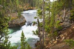 De besnoeiingen van de Yellowstonerivier door rots stock foto's