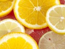 Ringen van citrusvruchten Royalty-vrije Stock Fotografie