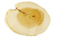 De besnoeiingshout van de zaag stock foto