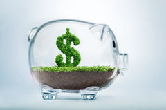 De besparingen van het spaarvarken Royalty-vrije Stock Fotografie