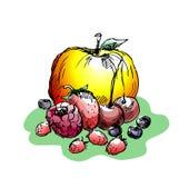 De bessen en het fruit van de zomer Royalty-vrije Stock Afbeelding