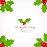 De bessen van de Kerstmishulst Stock Afbeelding
