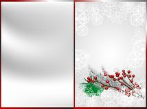 De bessen van Kerstmis Stock Foto's
