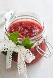 De bessenjam van de rode aalbes in een kruik Royalty-vrije Stock Foto's
