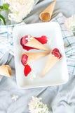 De bessensorbet van het veganistroomijs Royalty-vrije Stock Foto's