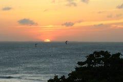 De beste zonsondergang van Brazilië Stock Foto's