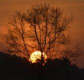 De beste zonsondergangfotografie met Nikon D3400 stock afbeeldingen