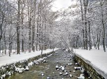 De bestemming van de sneeuw landscape Stock Afbeeldingen