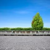 De bestrating en de boom van de kant van de weg Stock Afbeelding