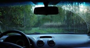 De bestuurder drijft de auto door het hout de camera binnen de auto schiet stock videobeelden