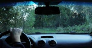 De bestuurder drijft de auto door het hout de camera binnen de auto schiet stock video