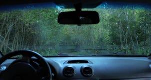 De bestuurder drijft de auto door het hout de camera binnen de auto schiet stock footage
