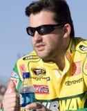De bestuurder Tony Stewart van de Kop NASCAR Stock Afbeelding