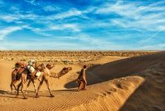De bestuurder van de Cameleerkameel met kamelen in duinen van Thar Stock Afbeelding