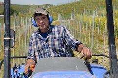 De de bestuurderswerken van de kruippakjetractor onder de rijen van wijngaarden Stock Afbeelding