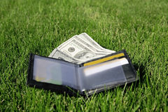 De beurs van het leer met een geld Stock Foto's