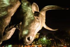 De beursstier van Singapore bij nacht Stock Afbeelding