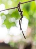 De bevestigingsmiddelen van de rollijn tussen de bomen royalty-vrije stock foto's