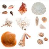 De bevindingen van het strand royalty-vrije stock fotografie