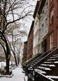 De bevriezende Stad van New York royalty-vrije stock afbeeldingen