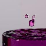 De bevroren Daling van het Water Royalty-vrije Stock Fotografie