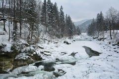 De bevroren snelle rivier van bergprut in de winter De lente het smelten van ijs Stock Foto