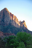 De Bewaker, groene bomen, Zion, zonneschijnavond Stock Foto's