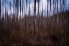 De bewegende bomen zijn zeer snel en kleurrijk Royalty-vrije Stock Foto's