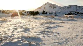 De bewegende winter van de grassneeuw stock footage