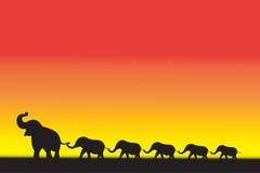 De beweging van de olifantsfamilie Royalty-vrije Stock Foto