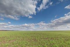 De beweging van de onweerswolken over de gebieden van de winterwhea Stock Afbeelding