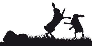 De beweging veroorzakende jacht van dieren en landscapes13 Stock Fotografie