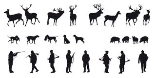 De beweging veroorzakende jacht van dieren en landscapes18 Stock Foto's