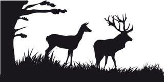 De beweging veroorzakende jacht van dieren en landscapes21 Royalty-vrije Stock Afbeeldingen