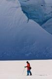 De bewegingen van de mens op skis stock fotografie