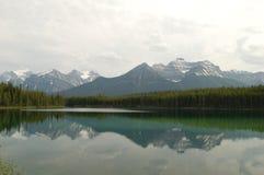 De Bezinning van Alberta Royalty-vrije Stock Afbeelding